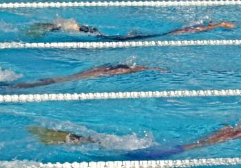 Présentation nage avec palmes